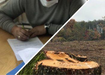 перевірки лісгоспів Олександр Кватирко